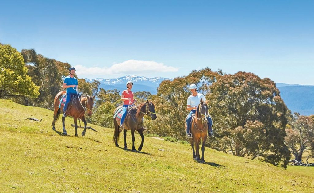 Horse riding in the Snowy Mountains.